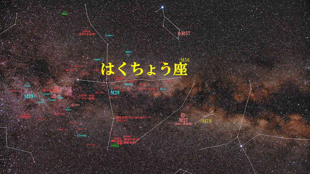 はくちょう座(白鳥座)/Cygnus(キグナス)