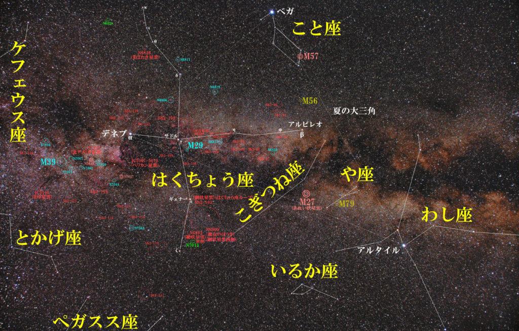 はくちょう座(白鳥座)の天体の位置や周辺の星座がわかる写真星図です。メシエは散開星団のM29とM39。主な散光星雲はNGC6888(三日月星雲・クレセント星雲)、NGC7000(北アメリカ星雲)、NGC6997(北アメリカ星雲内の散開星団)、NGC6992(網状星雲)、NGC6960(魔女のほうき星雲)。主なICはIC5067(ペリカン星雲)。その他サドル付近の散光星雲やチューリップ星雲などがあります。