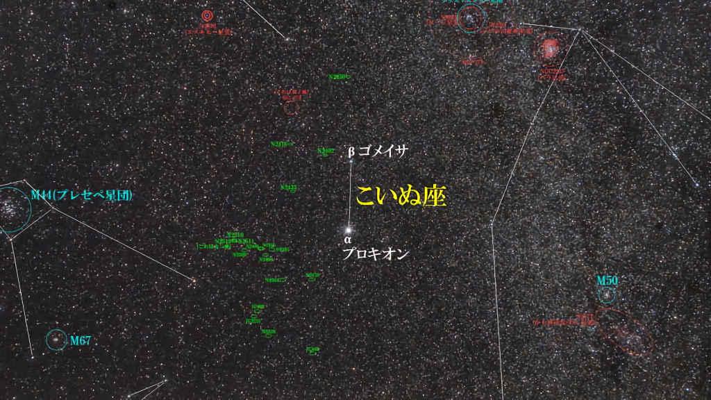 こいぬ座(小犬座)/Canis Minor(カニス ミノル)