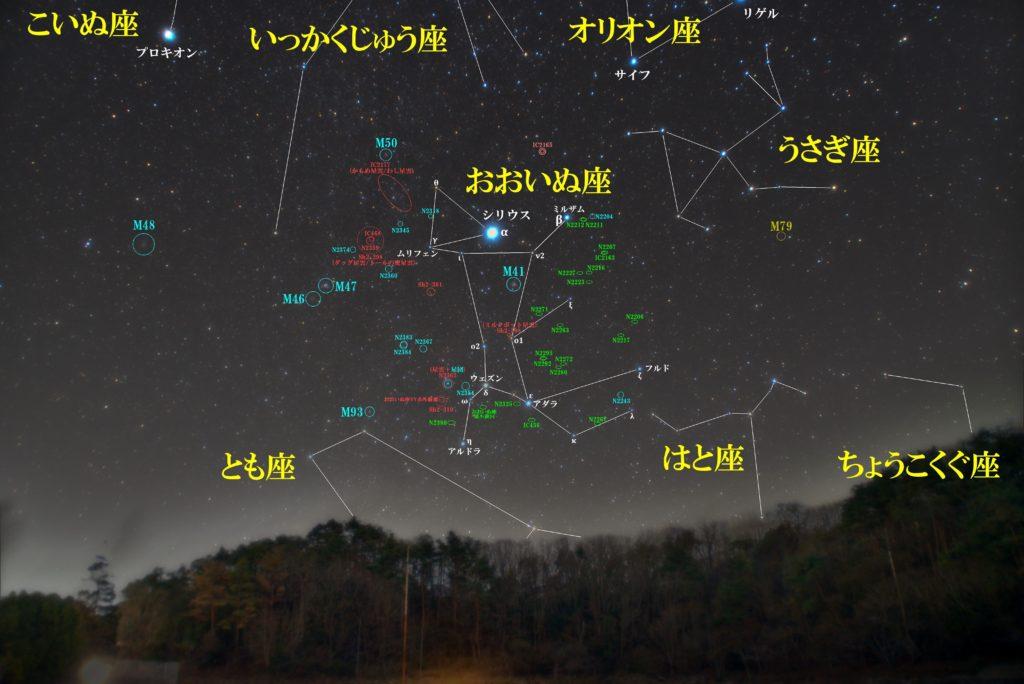 冬の星座おおいぬ座(大犬座)の天体の位置がわかる写真星図です。メシエ天体はM41(散開星団)。NGC2359(ダッグ星雲/トールの兜星雲)やSh2-308(ミルクボット星雲)、おおいぬ座VY赤外線源、おおいぬ座矮小銀河が有名。その他惑星状星雲や散光星雲、散開星団や銀河が多数あります。
