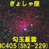 IC405(勾玉星雲)