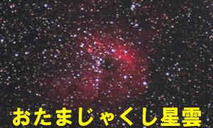 IC410(Sh2-236)おたまじゃくし星雲