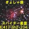 IC417(スパイダー星雲)
