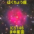 IC5146(まゆ星雲/コクーン星雲)