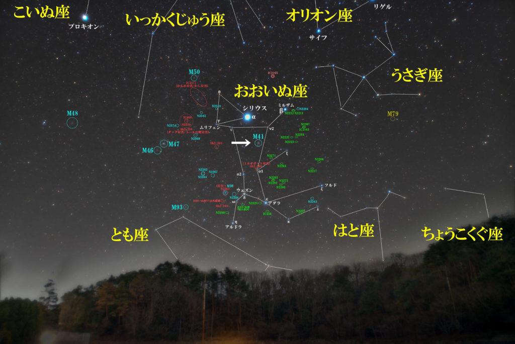 おおいぬ座のメシエ天体の位置がわかる写真星図です。散開星団のM41が1つあります。