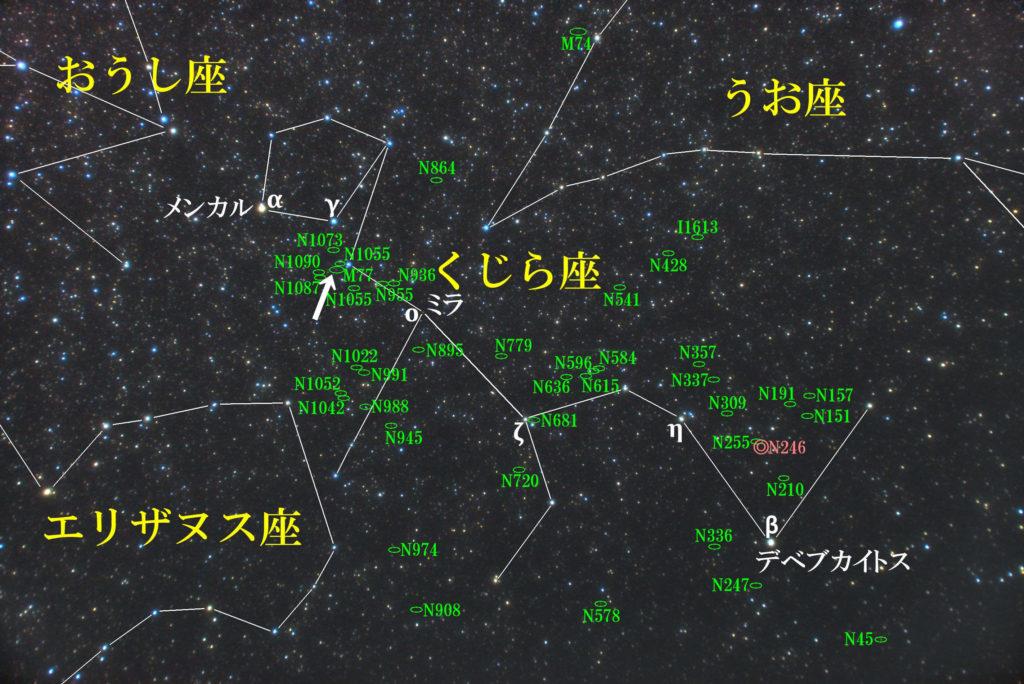 くじら座のメシエ天体の位置がわかる写真星図です。銀河のM77が1つあります。