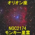 NGC2174(モンキー星雲)