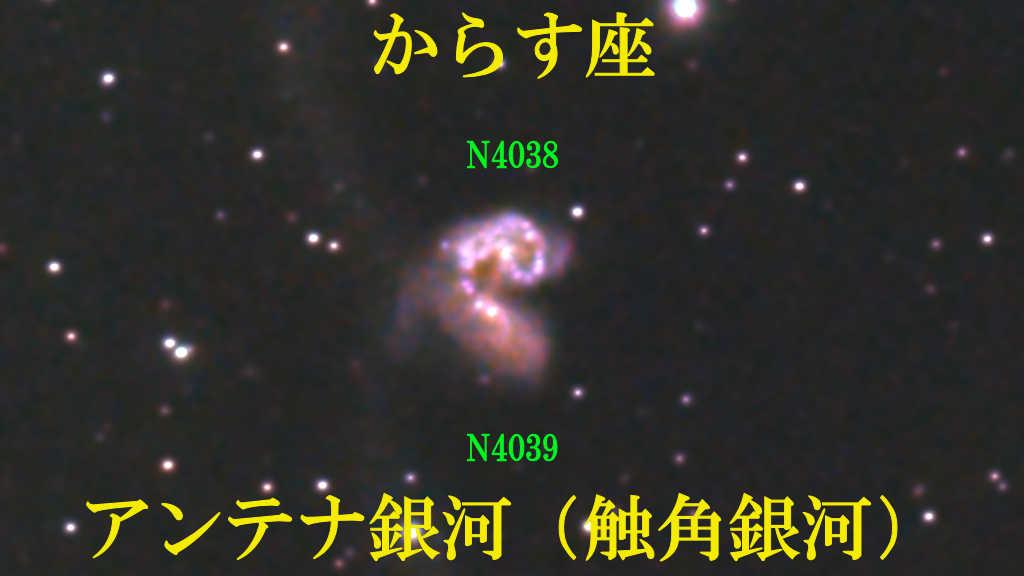 アンテナ銀河(触角銀河)NGC4038+NGC4039