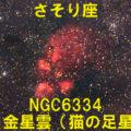 NGC6334(出目金星雲/猫の足星雲)