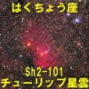 チューリップ星雲(Sh2-101)