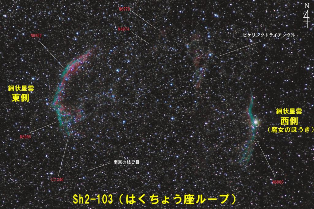 Sh2-103(はくちょう座ループ)の写真星図です。左側が網状星雲東側(NGC6992+NGC6995+IC1340+南東の結び目)で右側が網状星雲西側(魔女のほうき)でNGC6960です。中央北側にピケリングトライアングルがあります。上が天の北極で焦点距離はフルサイズ換算約524mm。