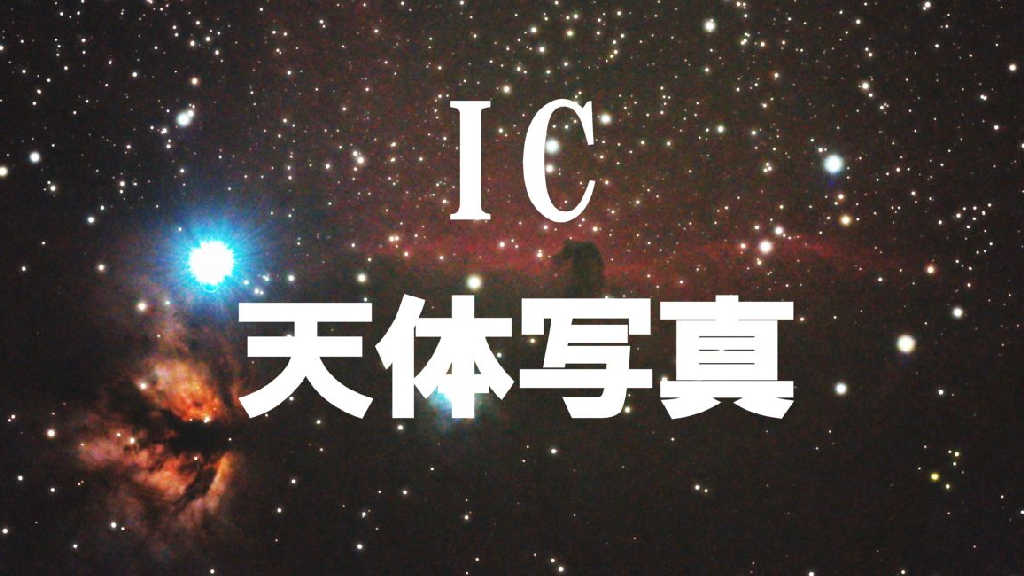 ICの写真