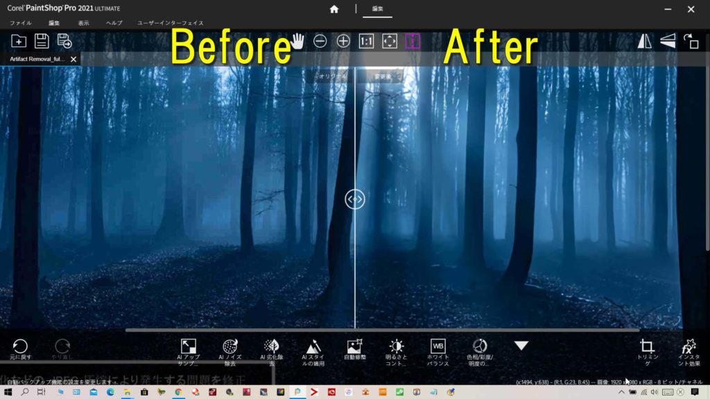 AI劣化除去とAIノイズ処理(DeNoise)をした効果がわかる暗い森林のビフォーアフターです。左が除去前、右が除去後です。
