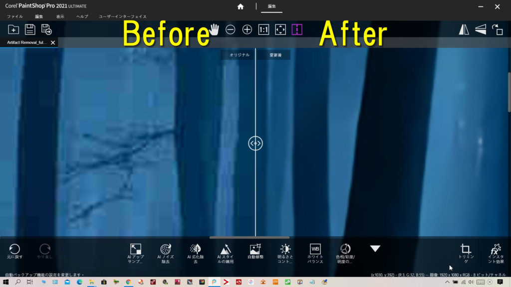 AI劣化除去とAIノイズ処理(DeNoise)をした効果がわかる暗い森林を拡大したビフォーアフターです。左が除去前、右が除去後です。