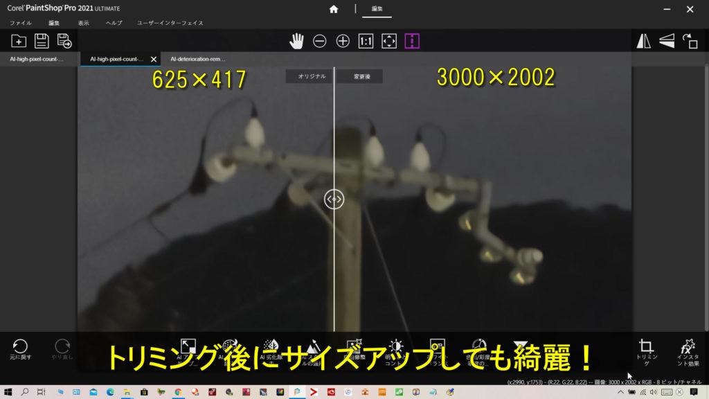 左がトリミングした625×417の写真で右がそれを3000×2002にサイズアップしてAI高画素化しました。サイズアップしても全然綺麗ってどういうこと!