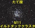 M11(ワイルドダッククラスター)